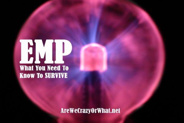 Survive an EMP