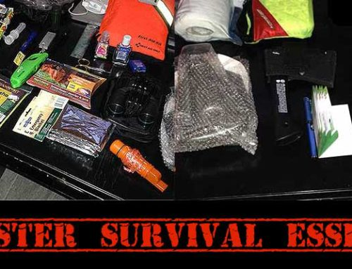 12 Disaster Survival Essentials