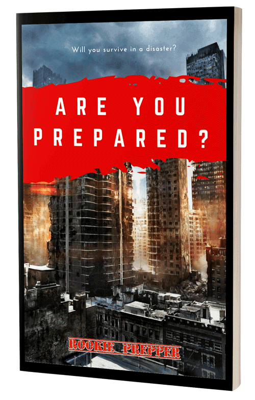 Are You Prepared free ebook download